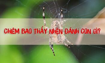 Chiêm bao thấy nhện tốt hay xấu, đánh lô đề bao nhiêu